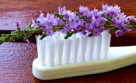 As medicinas naturais são utilizadas nas diferentes áreas da Medicina Dentária